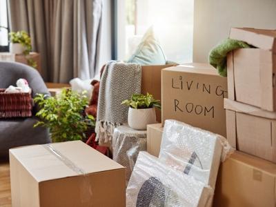 Packing or Unpacking Organization